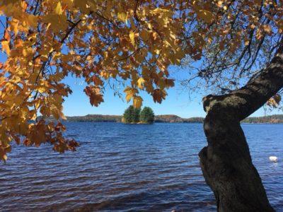 Muskoka Lake View