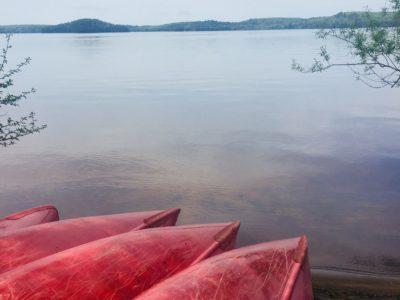 Muskoka Canoes On Lake